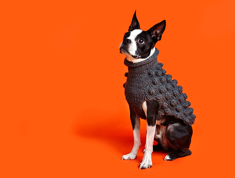 WARE-OF-THE-DOG-BOBBLE-KNIT-DOG-SWEATER-750