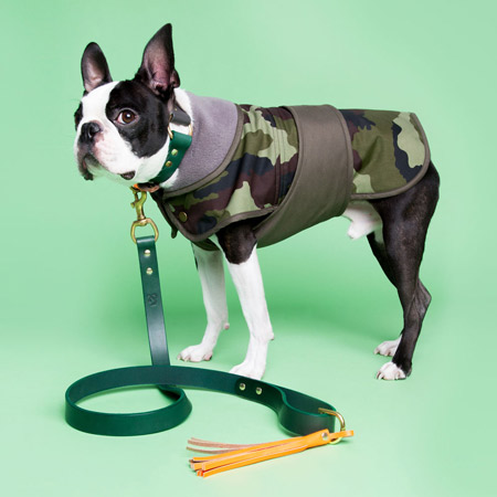 Fetch-and-Follow-Camo-Dog-Coat-Lifestyle-Basil-450