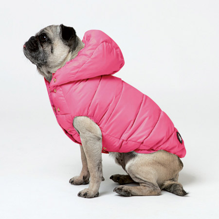 I-love-my-dog-quilted-dog-coat-pink-450