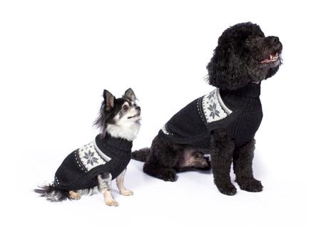 Alqo-Wasi-Fairisle-Knit-Dog-Sweater-Grey-Lifestyle-450